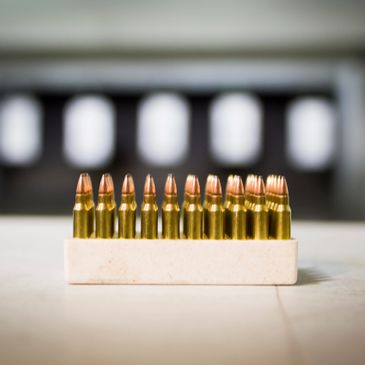 Action Defense LLC - Concealed Carry Classes, CCW Class