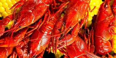 Crawfish in Virginia, whole cooked crawfish in Virginia, crawfish tail meat in Virginia, crawdads VA