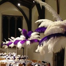 Beautiful Ostrich Feather plumes in White with an accent colour of Cadbury's purple