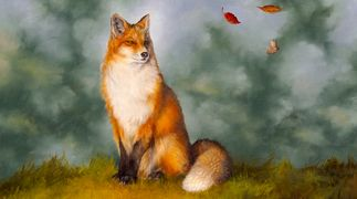 A red fox sitting and looking at swirling leaves