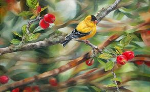 A Goldfinch on a branch with a few crabapples