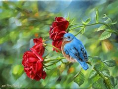 Red roses with a bluebird perched on the stem