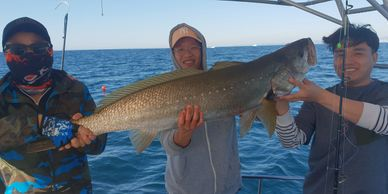 Private fishing charters brisbane