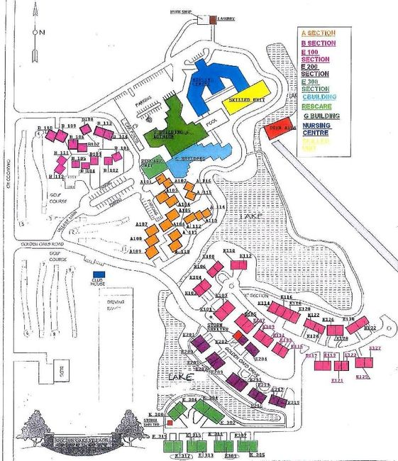 Community Layout of Towers, Cottages, Lake and Townhouses