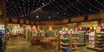 Festoon Lighting Commercial Smart Services Lighting