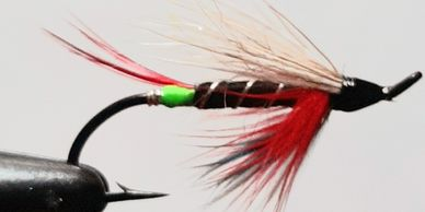Atlantic salmon White Wing Thunder and Lightning salmon fly St. John's  Newfoundland fishing guide