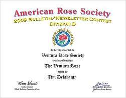 American Rose Society - Honorable Mention.