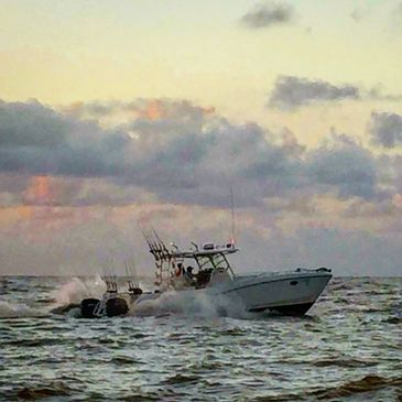 TX Guided Charters TX Guided Deep Sea Fishing TX Shark Fishing US Coast Guard Licensed Captains