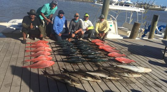 Red snapper charters Red snapper guides Reef fish  Sight of the beach Snapper Offshore deep sea fish