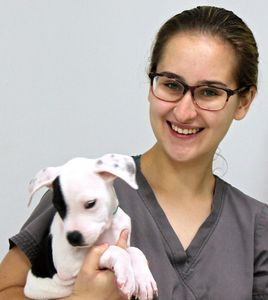 Young woman with brown hair and glasses holding puppy.