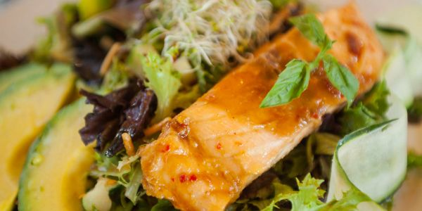 Salmon Salad at Vienna Cafe and Bistro, Fresh greens salad  at Vienna Cafe and Bistro, Spring mix salad at Vienna Cafe and Bistro, Lunch menu at Vienna Cafe and Bistro.