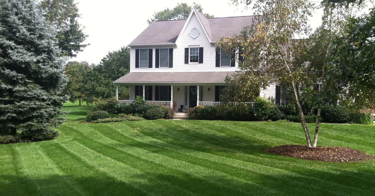 Lawn stripes. Lawn mowing and landscaping service in Columbia MD 21044 by LaneScapes.