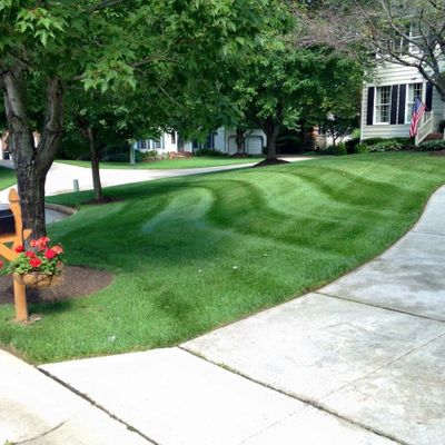 Beautiful green lawn in Columbia MD 21045 | Fertilization, mowing, landscaping |LaneScapes Lawn Care