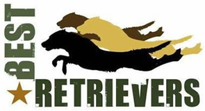 Best Retrievers Inc