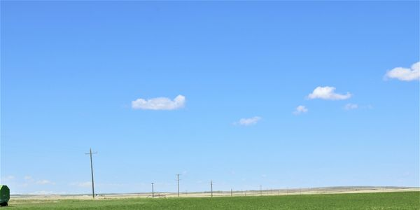 Organic farm for sale, Montana, Irrigated farm ground, Kelly Parks, Paris Gibson Realty