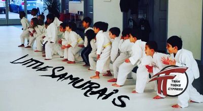 Cypress Bjj Kids Martial Arts Classes