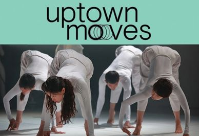 Uptown Moves Toronto Dance North York Dance Timea Wharton Dance Timea Wharton-Suri Dance