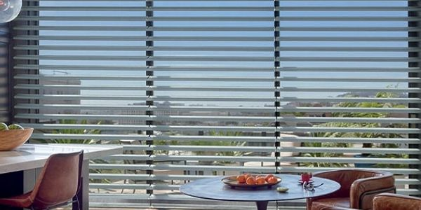 Hunter Douglas Pirouette Shades, Blinds and Shutters