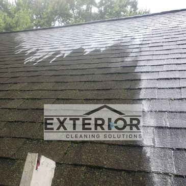 Organic growth removal and asphalt roof Cleaning.    Roof Softwash to prevent damage during cleaning.
