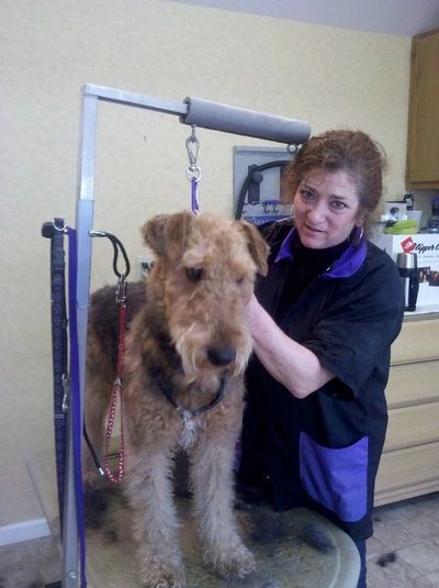 Grooming for all breeds and sizes