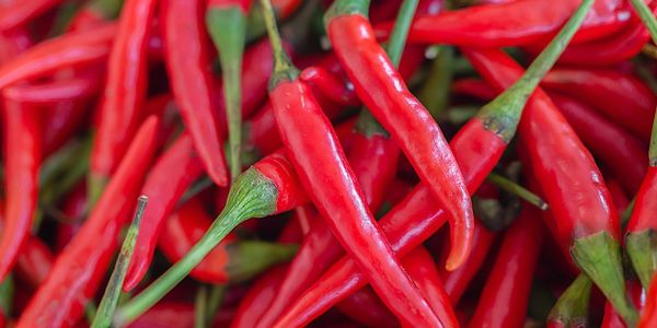 Fresh chilies for the best salsa.