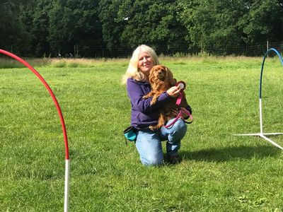 Happy Pets Services Canine Hoopers Level 2 Instructor . Dog Training Cheam