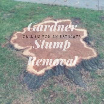 Gardner Stump Removal