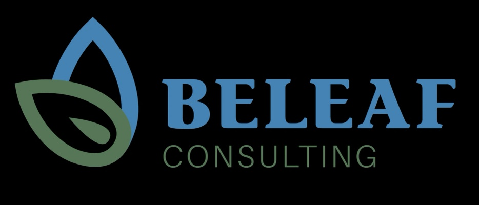 BELEAF CONSULTING