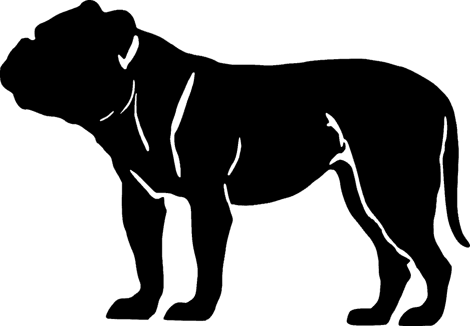 Arkansas Bull Dog Attorney Jody Shackelford