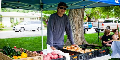 Wellington Colorado Farmers Market booth with vegetables