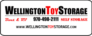 Wellington Toy Storage