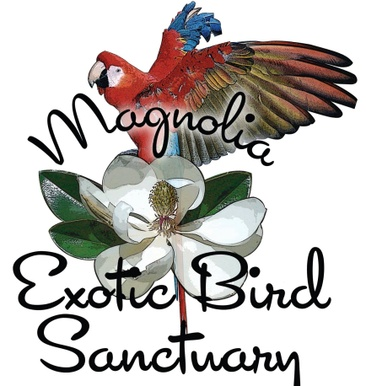 Magnolia Exotic Bird Sanctuary & Adoptions