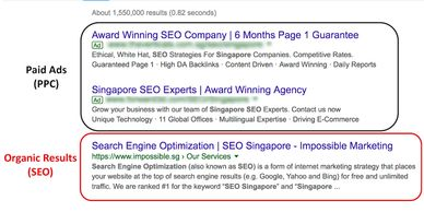 Organic Results SEO Services