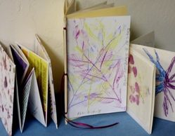 "Examples of ""A Closer Look"" books created from Nature and Art Journey at Colwell Cedars Retreat."