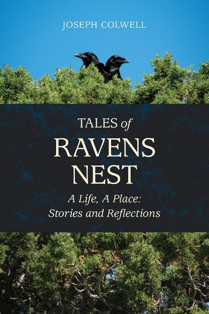 Beautiful cover of Joseph Colwell's short story collection, TALES OF RAVENS NEST.