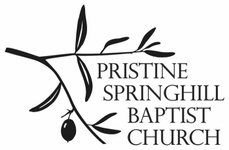 Pristine Spring Hill Baptist Church