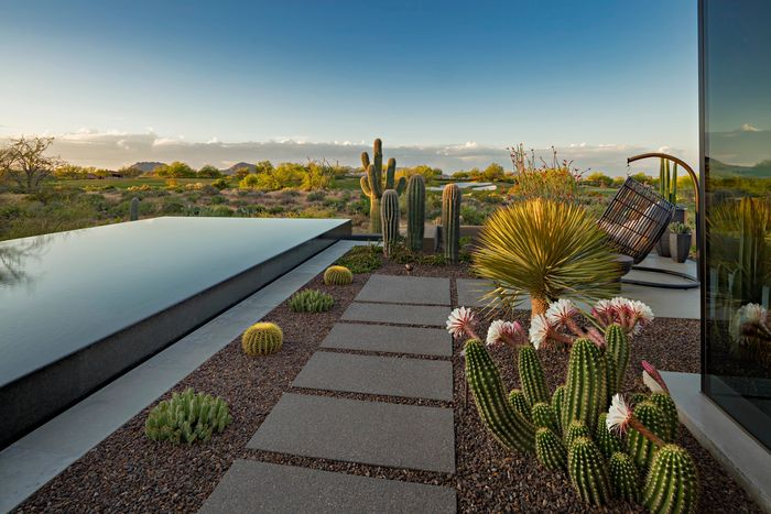 Chad Norris, High Desert Designs, Landscape Design and Install, Maintenance, Luxury