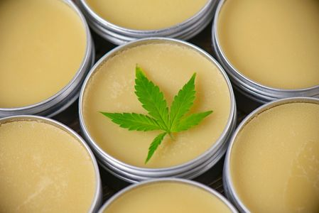The hemp product, CBD body balm cream in a tin used topically on the skin.