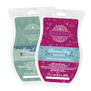 two scentsy bricks bundle deal blizzard berry christmas cottage cranberry & tinsel Blue Christmas