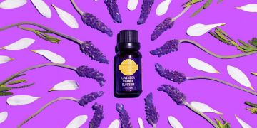 purple background with lavender flowers essential oils and natural elements