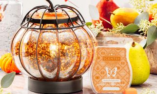 Scentsy enchanted pumpkin warmer of the month November 2019 mercury glass pumpkin fall harvest