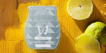 lemon limes scentsy wax bar butterfly wood background