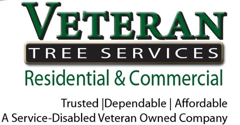 Veteran Tree Services