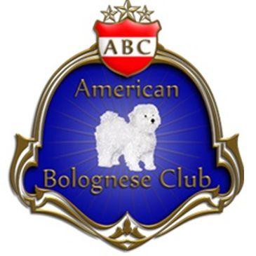 Bolognese Breeders - American Bolognese Club