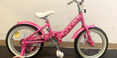 Torker PINK Wildflower Youth Bike