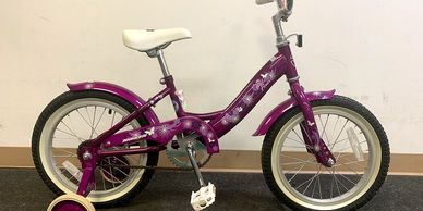 Torker PURPLE Wildflower Youth Bike