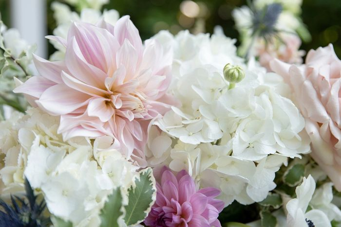 wedding & event flowers, romantic white and blush arrangement with dahlias, garden roses & hydrangea