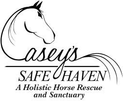Misty Acres Horse Boarding
