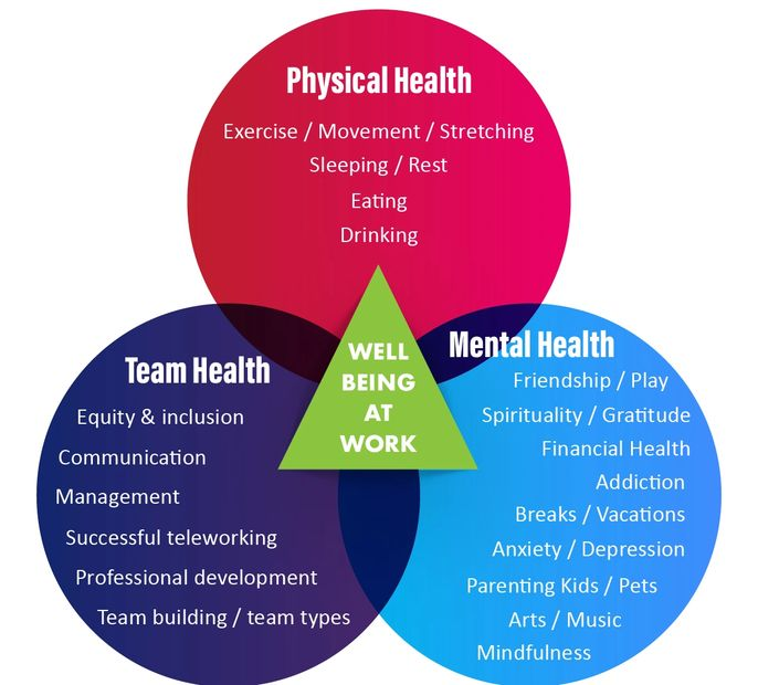 three circle that list elements of Physical Health, Mental Health and Team Health