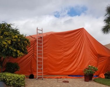 Home with tent for fumigation.